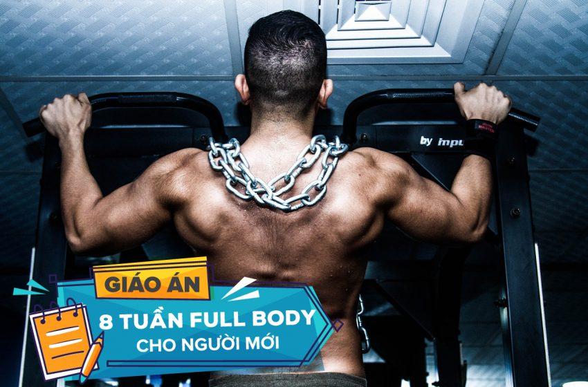 Lịch tập Gym cho người mới: Giáo án 8 Tuần Full Body