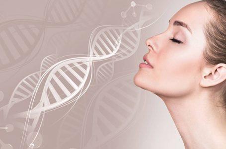 Lợi ích của Protein Collagen là gì? Sản phẩm Protein Collagen tốt